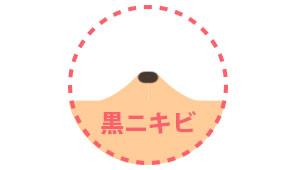 howto_nikibi02