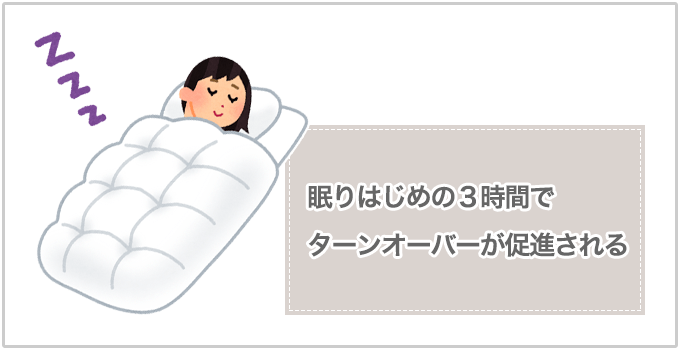 ターンオーバー 睡眠