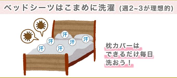 不衛生な寝具