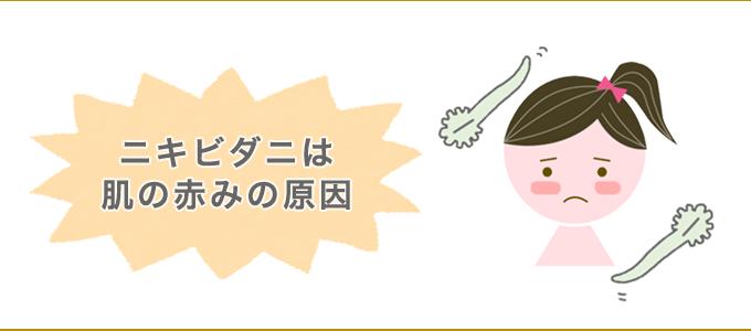 ニキビダニ 赤み