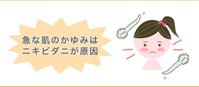 ニキビダニ かゆみ