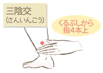 ホルモンバランスを整えるツボ(三陰交)