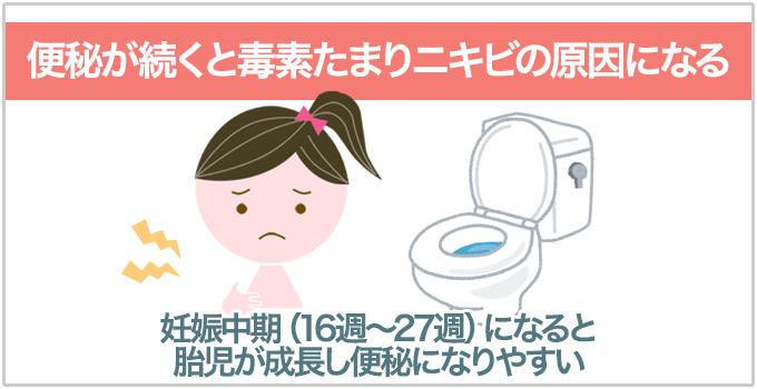 妊娠ニキビ 便秘