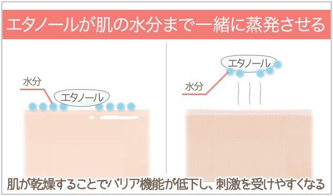 エタノールは肌の水分まで一緒に蒸発させる