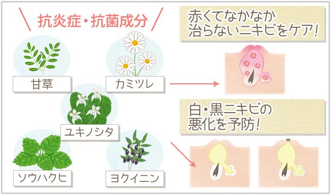 ペネロピムーンジュノアの特徴:赤ニキビをケア&白黒ニキビの悪化を予防