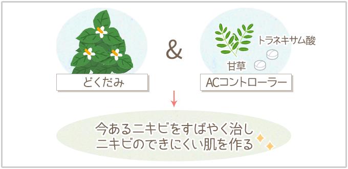 草花木果の特徴:どくだみ&ACコントロールでニキビをケア&予防!