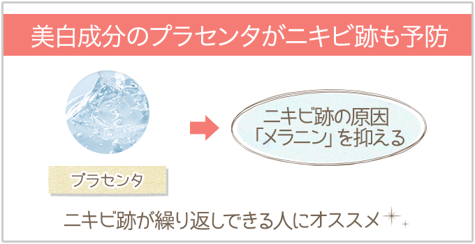 美白成分のプラセンタがニキビ跡も予防