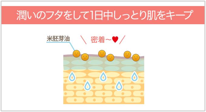 米胚芽油が肌に密着して1日中しっとり肌をキープ