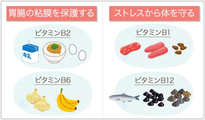 ビタミンB群(胃腸の粘膜を保護する・ストレスから体を守る)